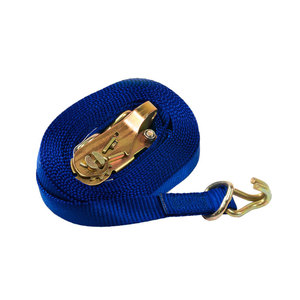 """43887-11 by ANCRA - Mini Ratchet Strap--1""""x20'-Display Packaged"""