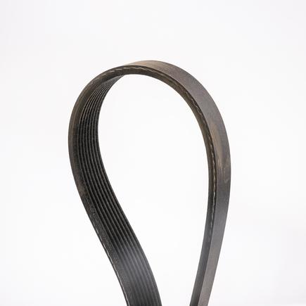 Dayco 5080585 - Poly Rib Gold Label Belt