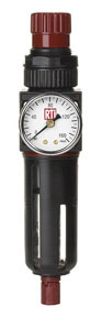 FR250G by READING TECHNOLOGIES INC. - Filter/Regulator with Gauge, 1/4""