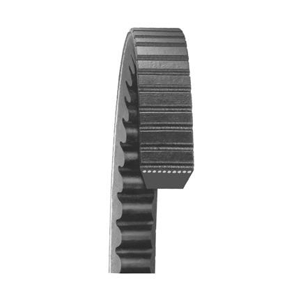 Dayco 22520 - Top Cog Gold Label V Belt