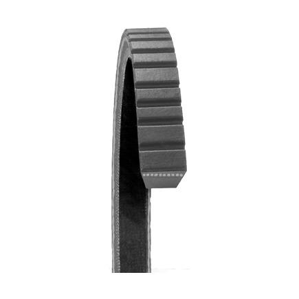 Dayco 17430 - Top Cog Gold Label V Belt