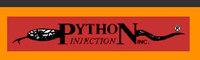 PYTHON INJECTION